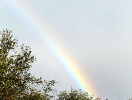 Regenbogen…