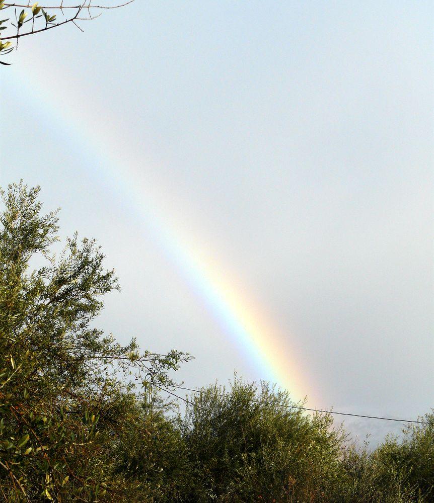Regenbogen - Seelenworte