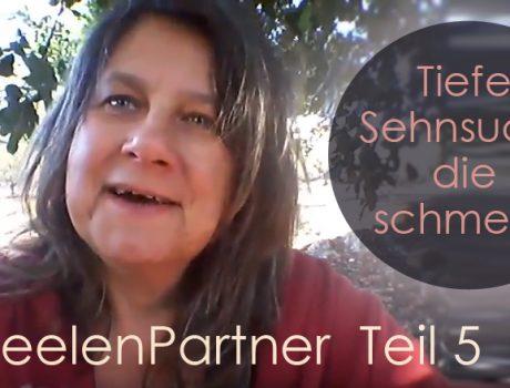 SeelenPartner, Dualseelen und Zwillingsseelen – Teil5