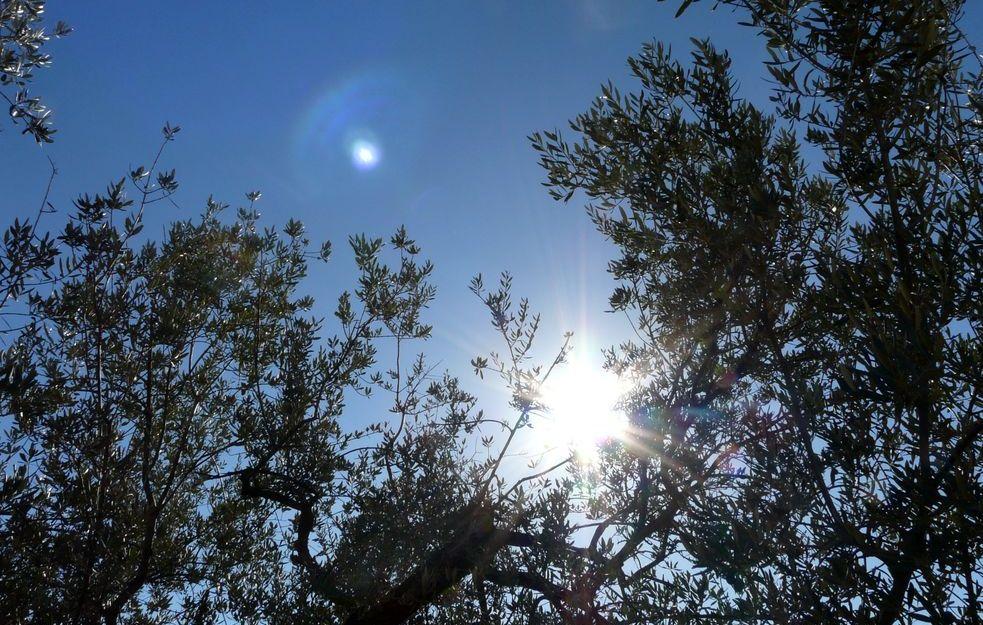 Frühling-Sommer-Frieden ~ RetreatTag
