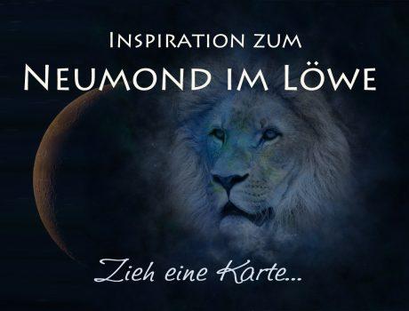 Inspiration zum Neumond im Löwe